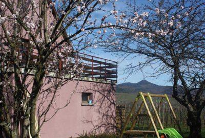 Terrasse_Amandier_baumann-zirgel