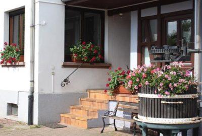 entree-pommier_baumann-zirgel